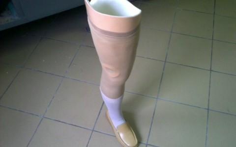Proteza uda